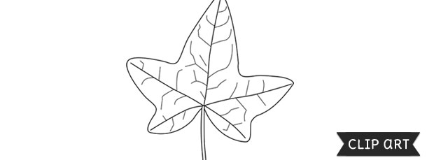 Ivy Leaf Template Clipart