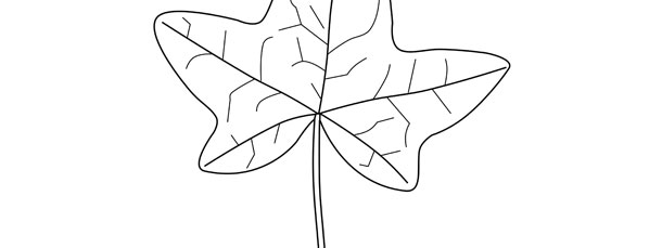 Ivy Leaf Template Large