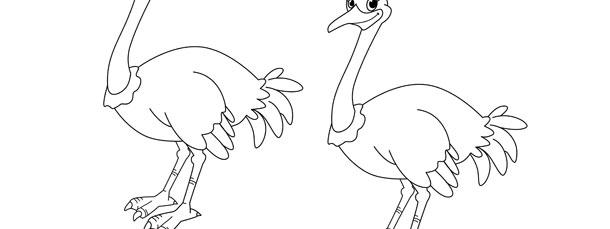 Ostrich Template – Medium