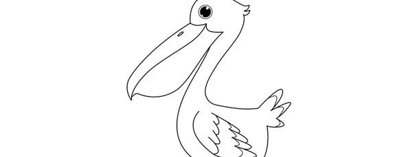 Pelican Template  U2013 Large