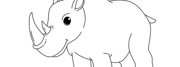 rhino template large