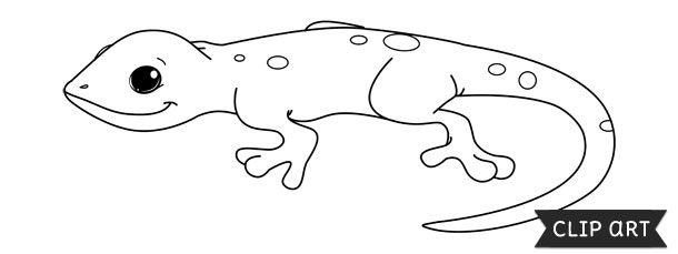 Salamander Template – Clipart