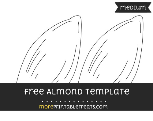 Free Almond Template - Medium