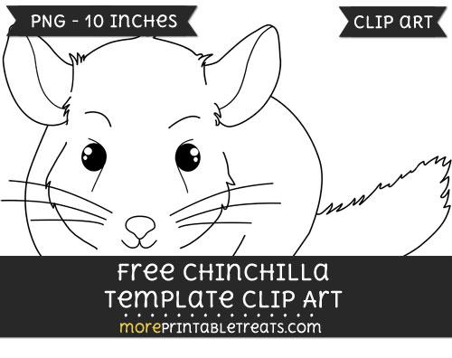 Free Chinchilla Template - Clipart