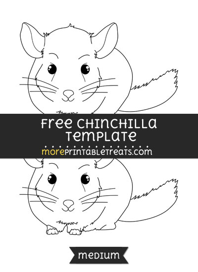 Free Chinchilla Template - Medium