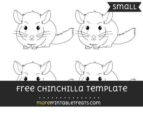 Free Chinchilla Template - Small