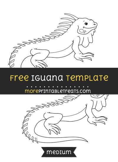 Free Iguana Template - Medium