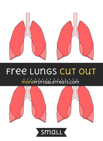 Free Lungs Cut Out - Small Size Printable