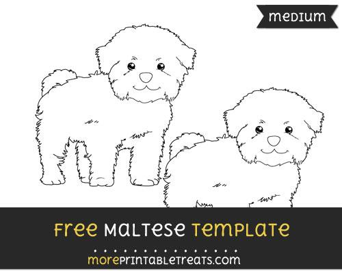 Free Maltese Template - Medium