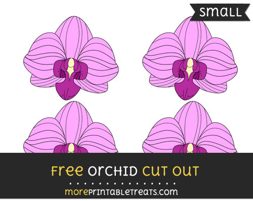 Free Orchid Cut Out - Small Size Printable