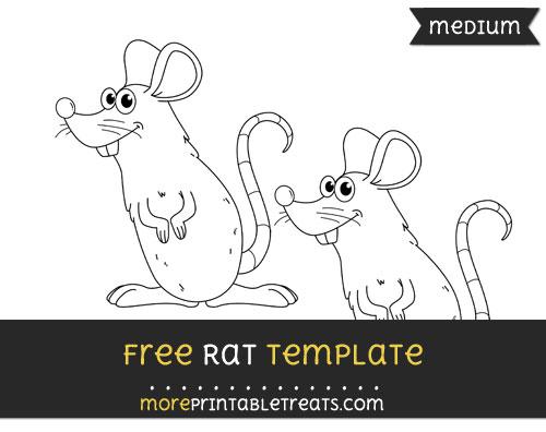 Free Rat Template - Medium